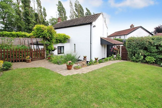 Thumbnail Cottage for sale in Hare Road, Great Plumstead, Norwich