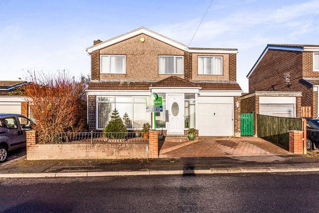Thumbnail Detached house for sale in Redesdale Avenue, Blaydon-On-Tyne