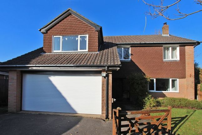 Thumbnail Detached house to rent in New Forest Drive, Brockenhurst