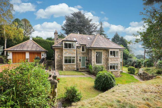 Thumbnail Detached house for sale in Tom Lane, Sheffield