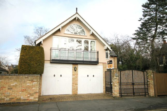 Thumbnail Detached house to rent in Montague Road, Cambridge