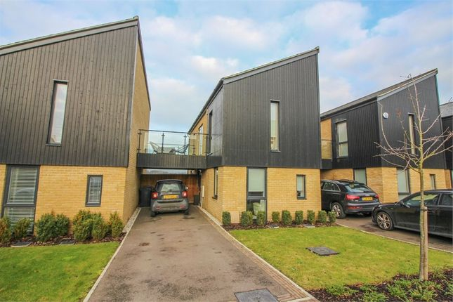 Thumbnail Link-detached house for sale in Sparrowhawk Way, Newhall, Harlow, Essex