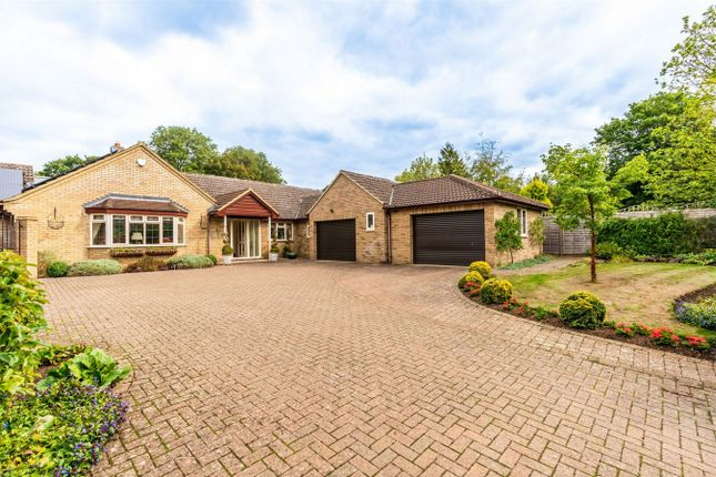 Thumbnail Detached bungalow for sale in Common Lane, Hemingford Abbots, Huntingdon