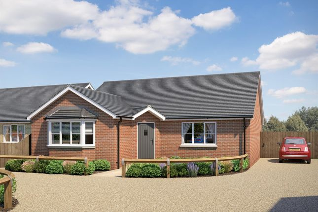 Thumbnail Detached bungalow to rent in West End, March