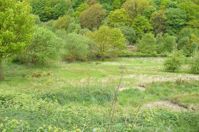 Land for sale in Grazing Land At Daisy Hill, Sacriston, Durham