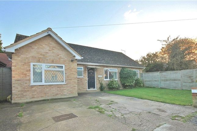 Thumbnail Bungalow for sale in Green Lane, Staines-Upon-Thames