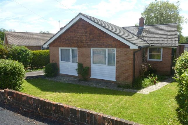 Thumbnail Detached bungalow to rent in Mapletree Avenue, Waterlooville