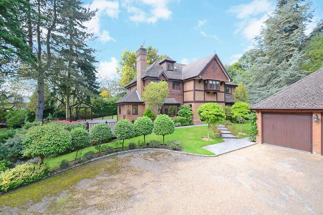 Detached house to rent in Woodside Road, Cobham