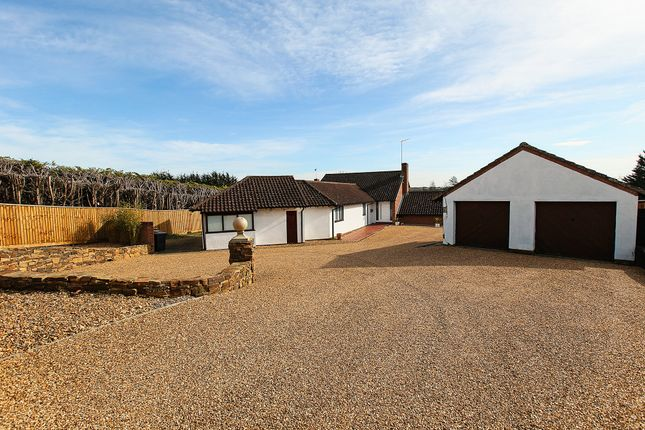 Thumbnail Detached house for sale in The Highlands, Exning