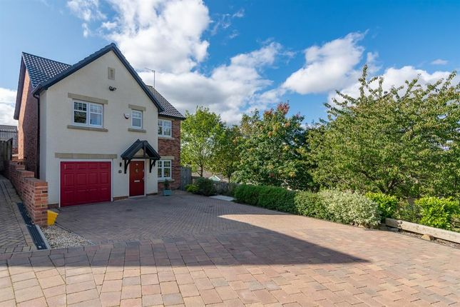 Thumbnail Detached house for sale in Seagent Place, Consett