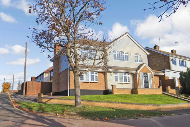 Thumbnail Detached house for sale in Beech Avenue, Rayleigh, Essex