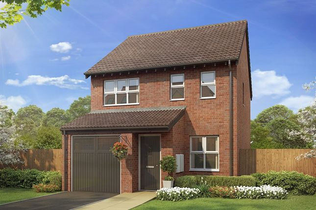 "Thumbnail Semi-detached house for sale in ""The Rufford"" at The Middles, Stanley"