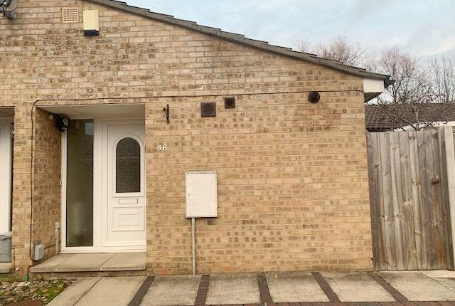 Thumbnail Bungalow to rent in Osprey, Orton Goldhay, Peterborough