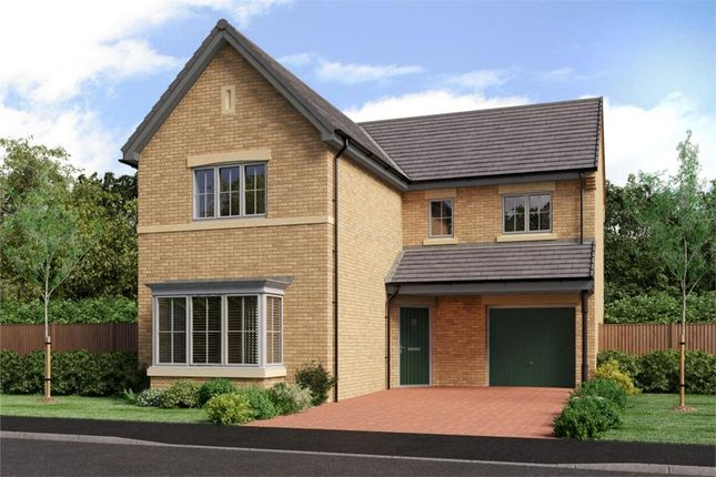 "4 bedroom detached house for sale in ""The Fenwick"" at Low Lane, Acklam, Middlesbrough"