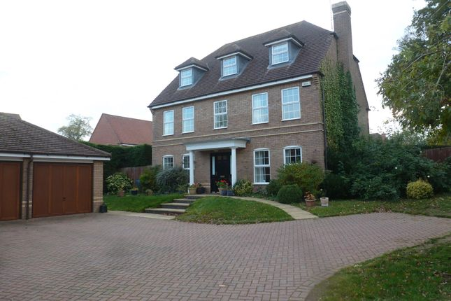 Thumbnail Property to rent in Chestnut Drive, Stretton Hall, Leicester