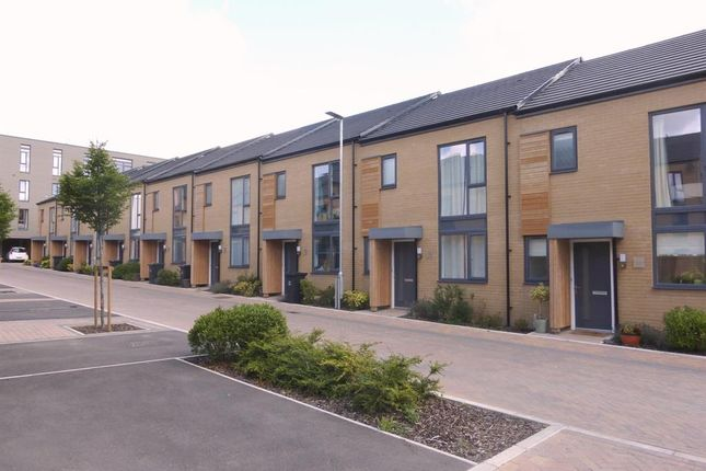 Thumbnail Property to rent in Firepool View, Taunton