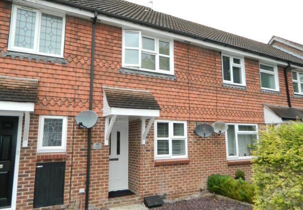 Thumbnail Property to rent in Wordsworth Place, Horsham