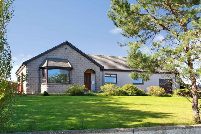 Thumbnail Bungalow for sale in Old Gamrie Road, Macduff, Aberdeenshire