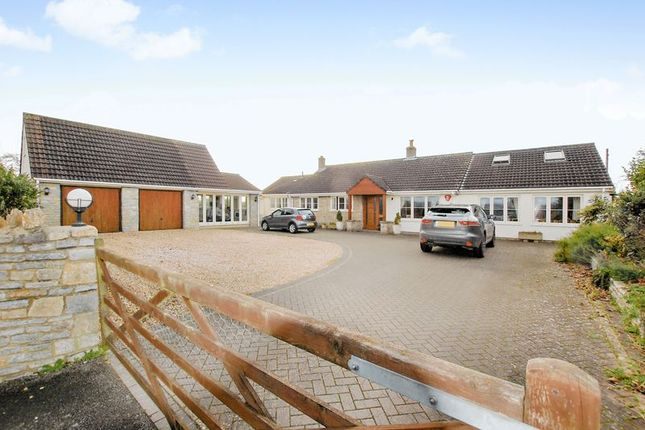Thumbnail Detached house for sale in Mill Lane, Wedmore