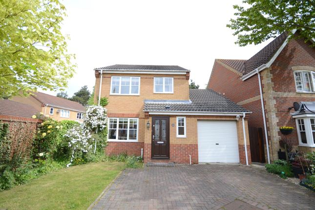 Thumbnail Detached house for sale in Thorpe Marriott, Norwich