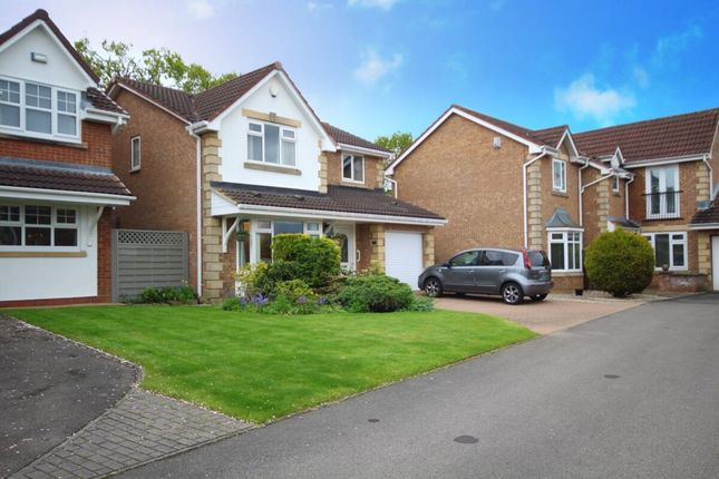Thumbnail Detached house for sale in Foxgloves, Coulby Newham, Middlesbrough