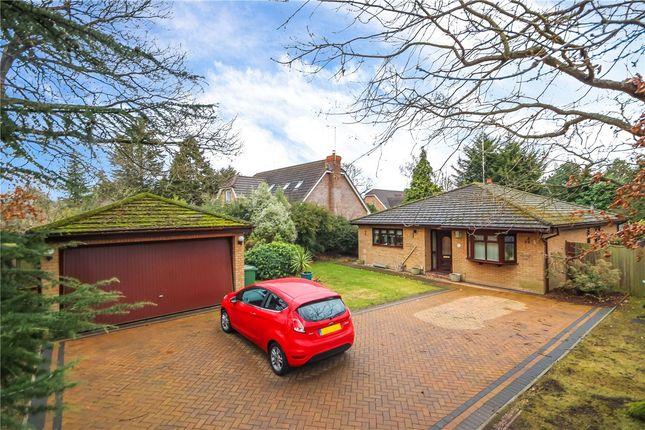 Thumbnail Detached bungalow for sale in Ferndene, Bricket Wood, St. Albans, Hertfordshire