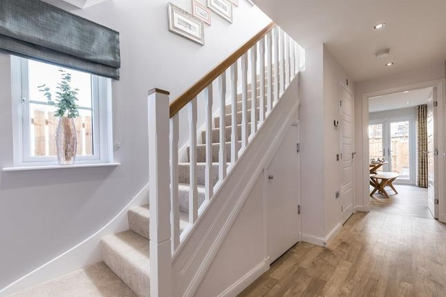 Westburn Gardens Lauriston Townhouse Show Home