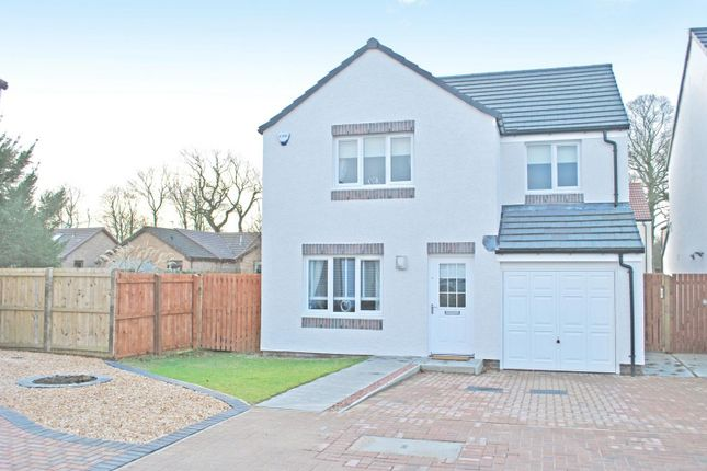 Thumbnail Detached house for sale in Hedgerow Drive, Larbert