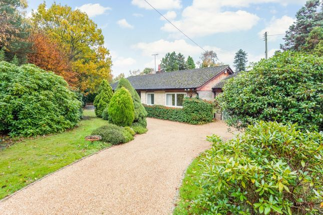 Thumbnail Bungalow to rent in Beaconsfield Road, Chelwood Gate, Haywards Heath