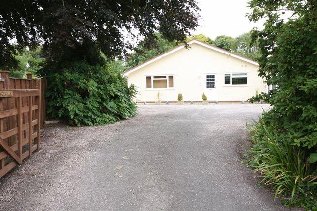 3 bed semi-detached bungalow to rent in Brendon Road, Watchet