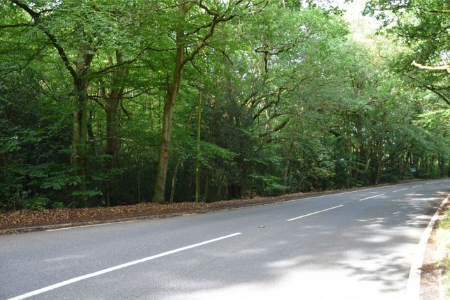 Thumbnail Land for sale in Guildford Road, Frimley Green, Surrey