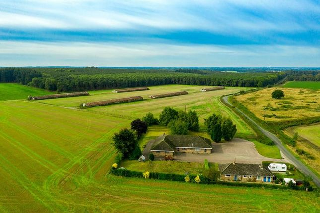 Thumbnail Commercial property for sale in Little Langford Farm, Hilborough, Thetford, Norfolk