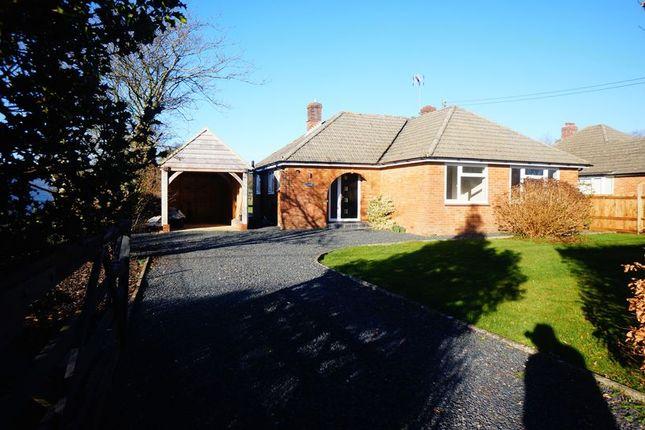 Thumbnail Detached bungalow to rent in Soldridge Road, Medstead, Alton