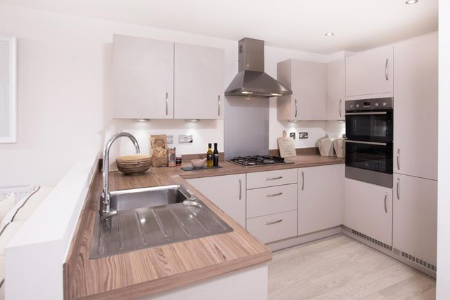 """Thumbnail Semi-detached house for sale in """"Cannington"""" at South Road, Durham"""