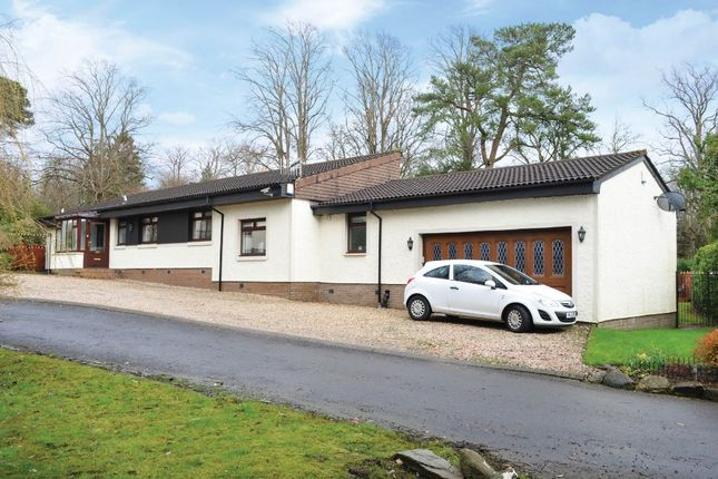 Thumbnail Bungalow for sale in Victoria Road, Helensburgh, Argyll & Bute