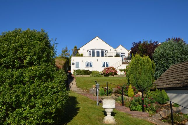 Thumbnail Detached bungalow for sale in Upper Kitesnest, Whiteshill, Stroud, Gloucestershire