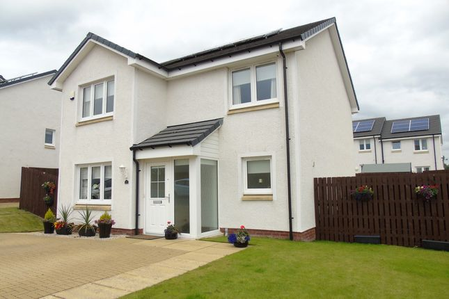 Thumbnail Detached house for sale in Delaney Wynd, Cleland, Motherwell
