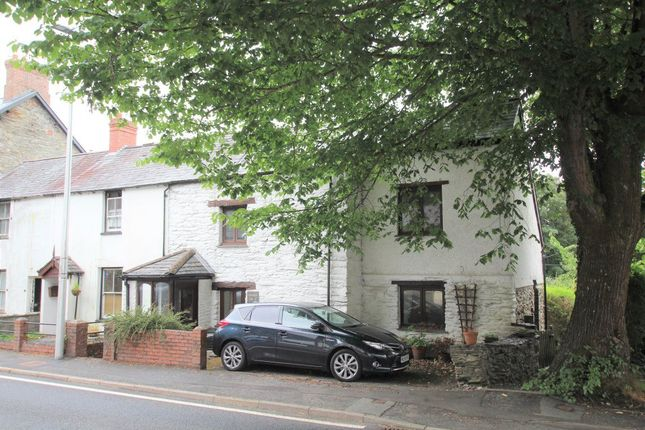 Thumbnail Property to rent in Eglwys Fach, Machynlleth