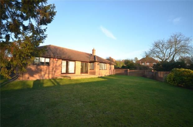 Thumbnail Detached bungalow to rent in Symonds Lane, Linton, Cambridge, Cambs