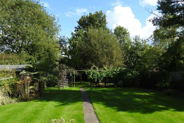 Thumbnail Detached house for sale in Elmfield, Bookham, Leatherhead
