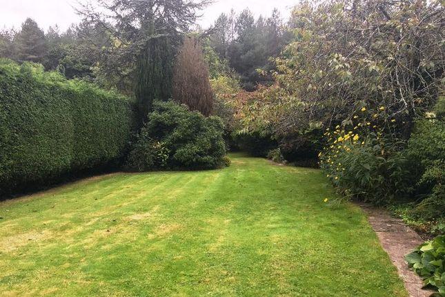Garden of North Baddesley, Southampton SO52