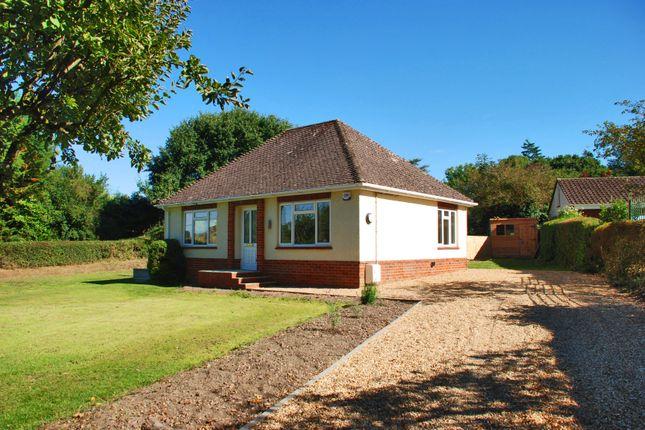 Thumbnail Detached bungalow to rent in Hale, Fordingbridge, Hampshire