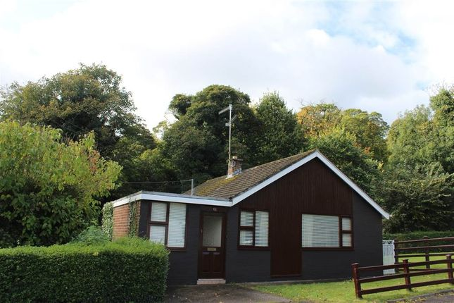 Thumbnail Bungalow for sale in The Glen, Newry