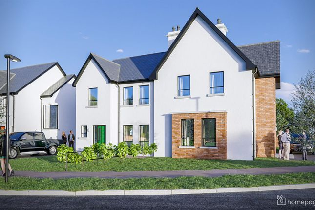 Thumbnail Semi-detached house for sale in The Tulip, Butlers Wharf, Derry