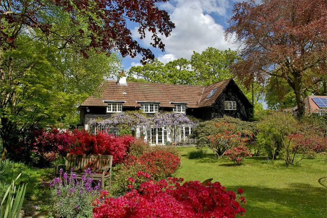 Thumbnail Detached house for sale in 2 Clough Lane, Burley, Ringwood