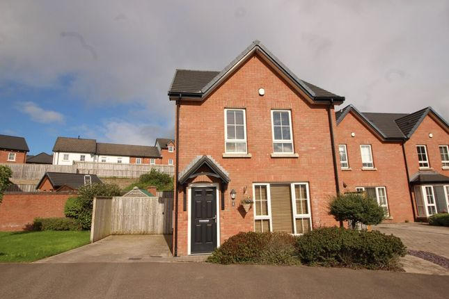 Thumbnail Detached house for sale in Sir Richard Wallace Square, Lisburn
