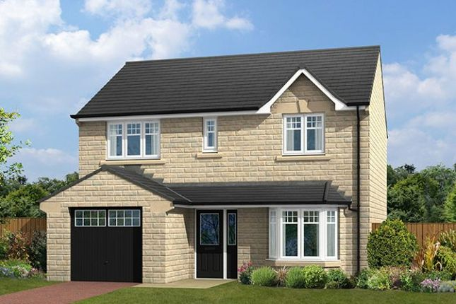 "Thumbnail Detached house for sale in ""The Birkwith"" at Roes Lane, Crich, Matlock"