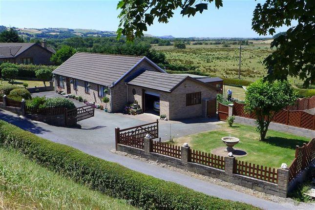 Thumbnail Bungalow for sale in Machynlleth, Ceredigion