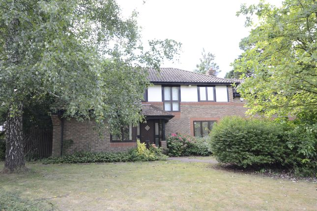 Thumbnail Property to rent in The Burlings, Ascot
