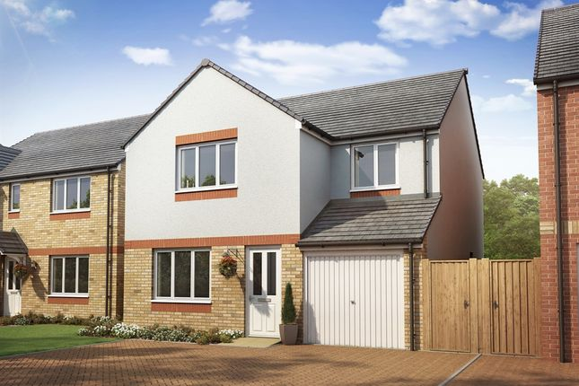 "4 bedroom detached house for sale in ""The Leith"" at Lanton Road, Falkirk"